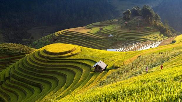 Mu Cang Chai parmi les destinations les plus colorees au monde hinh anh 1