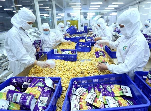 Le Vietnam beneficie de nombreuses exportations avantageuses vers la Roumanie hinh anh 1