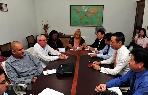 Le projet de production de riz Vietnam-Cuba entre dans une nouvelle phase hinh anh 1