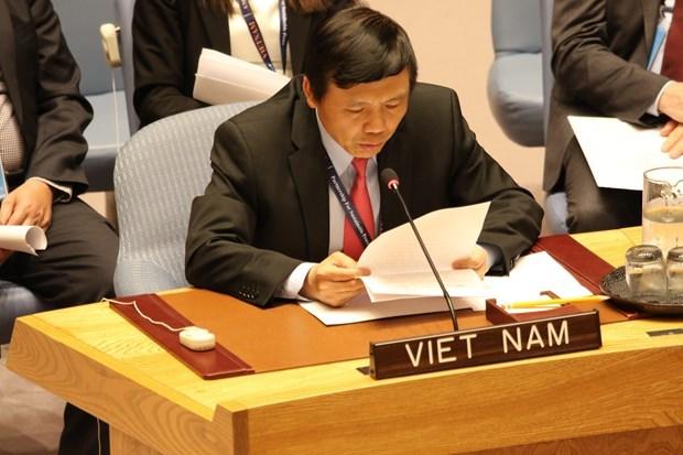 Des amis etrangers soutiennent pour le Vietnam comme membre non permanent du Conseil de securite hinh anh 1