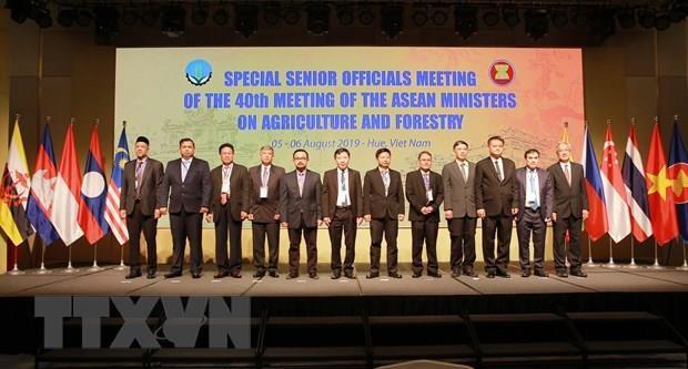 Ouverture de la reunion des hauts officiels du secteur agro-sylvicole de l'ASEAN hinh anh 1