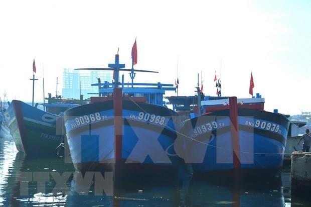 Mer Orientale : le Vietnam souligne la primaute du droit et la volonte de la paix hinh anh 1
