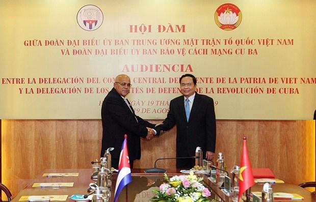 Promouvoir les relations de cooperation integrale Vietnam-Cuba hinh anh 1