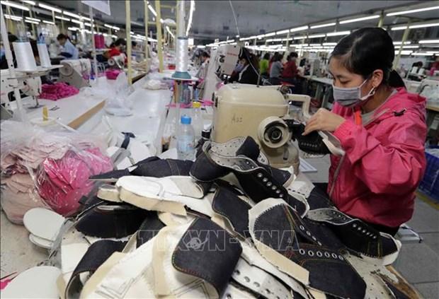 Le Vietnam enregistre un excedent commercial de 410 millions de dollars avec Israel hinh anh 1