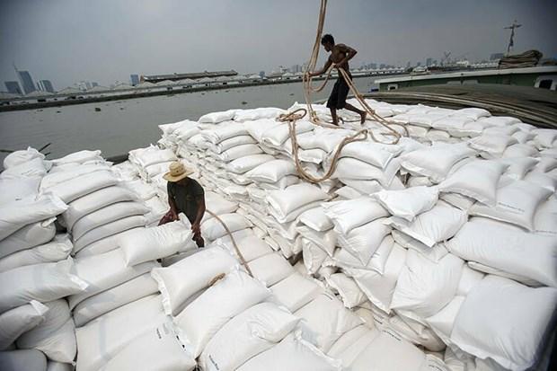 Le Vietnam peut detroner la Thailande de son statut de 2e exportateur mondial de riz hinh anh 1