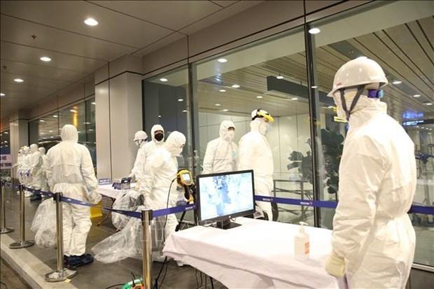 Trois aeroports nationaux recevront les vols en provenance des zones touchees par l'epidemie hinh anh 1