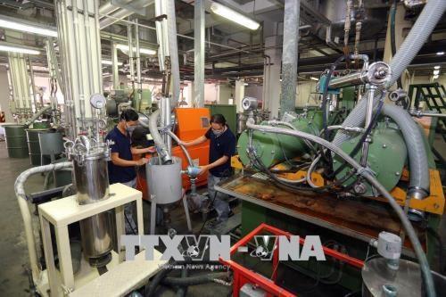 Dong Nai : secteur industriel en croissance hinh anh 1
