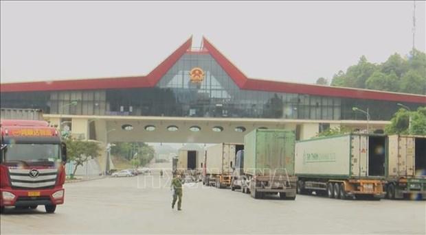 Le Vietnam renforce le controle du transport des marchandises aux portes frontalieres hinh anh 1