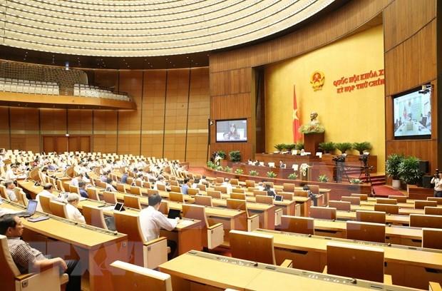 Les programmes d'elaboration des lois et d'ordonnances seront examines le 22 mai hinh anh 1