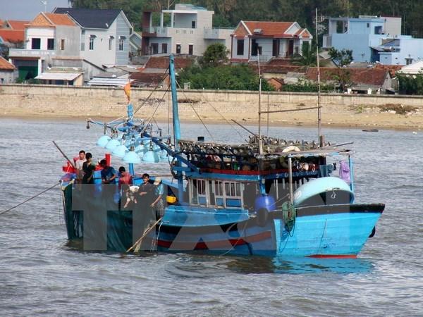 Le Vietnam fait echo a la Journee mondiale de l'Ocean hinh anh 1
