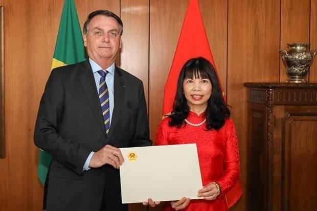 Le president bresilien attache une grande importance aux liens avec le Vietnam hinh anh 1