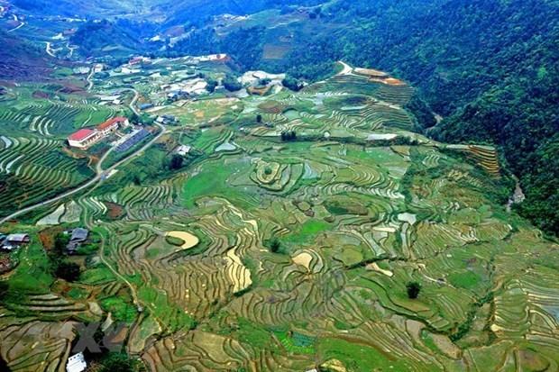 Lao Cai: de nombreuses mesures pour relancer le tourisme apres le COVID-19 hinh anh 2