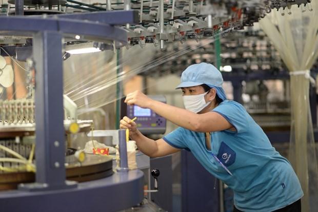 Les entreprises domestiques et etrangeres stimulent la production post COVID-19 hinh anh 2