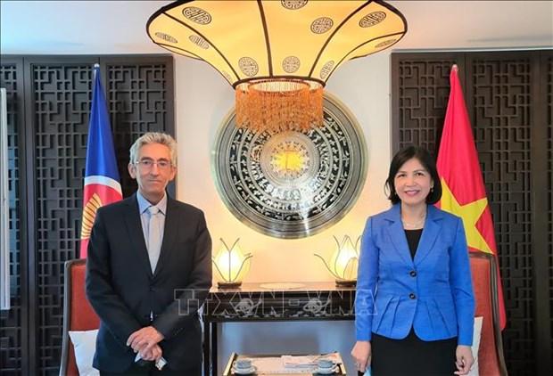 Le Vietnam renforce sa cooperation avec le Centre Sud hinh anh 1