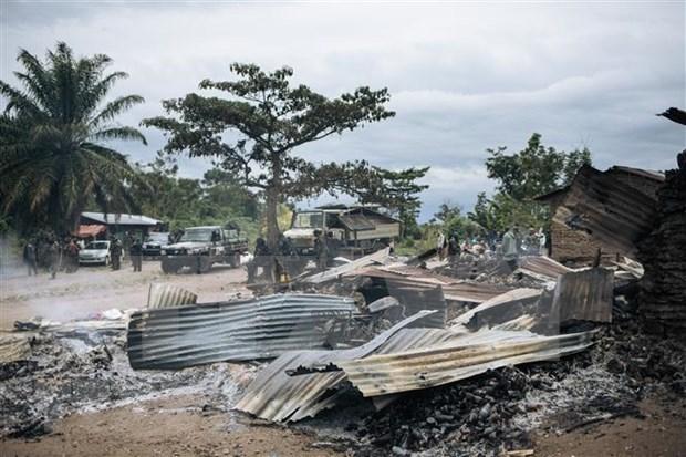 ONU: le Vietnam et l'Indonesie appellent la communaute internationale a aider les Grands Lacs hinh anh 1