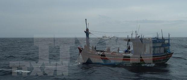 Trois pecheurs de Binh Dinh a la derive en mer sauves hinh anh 1