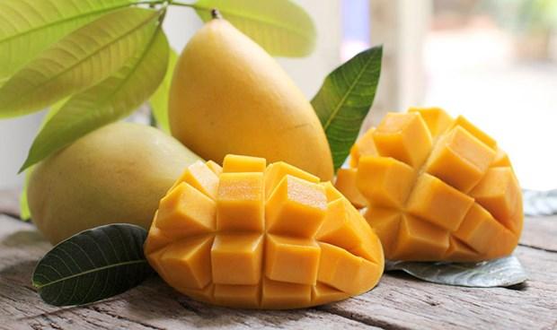 Le Vietnam vise 650 millions de dollars d'exportations de mangues d'ici 2030 hinh anh 1