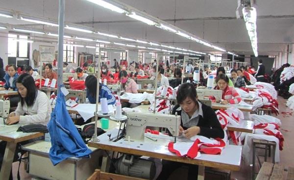 Le Vietnam s'efforcera de creer environ 700.000 emplois pour les jeunes chaque annee d'ici 2030 hinh anh 1