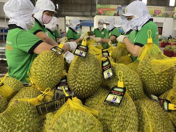Les exportations de produits agricoles du Vietnam vers l'Australie en hausse hinh anh 1