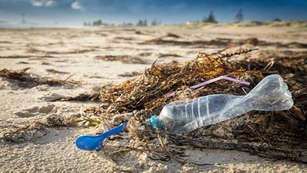 Le Vietnam pionnier dans l'elaboration d'un accord international pour reduire la pollution plastique hinh anh 2