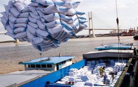 Montee en fleche des exportations vietnamiennes de riz en Indonesie en dix mois hinh anh 1
