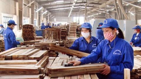 Les exportations de produits sylvicoles atteignent 8,49 milliards de dollars en 11 mois hinh anh 1