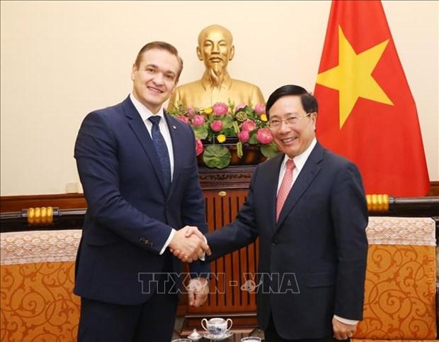 Le vice-PM et ministre des AE Pham Binh Minh recoit le ministre littuanien de l'Interieur hinh anh 1