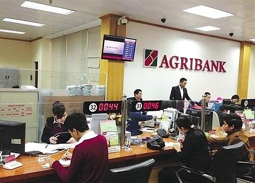 Moody's distingue la banque vietnamienne Agribank hinh anh 1