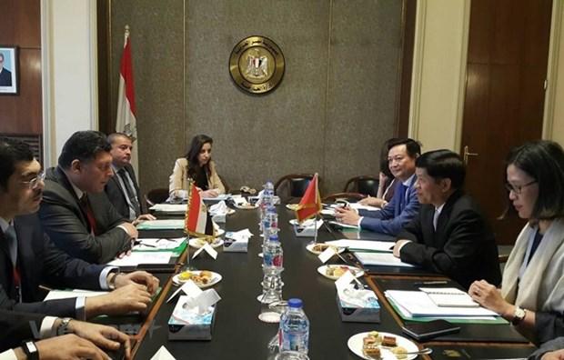 L'Egypte veut developper des relations avec le Vietnam hinh anh 1