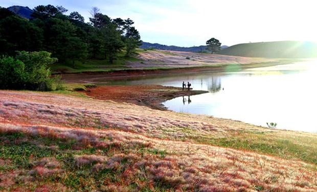 Le lac Dankia deviendra un haut lieu touristique du Tay Nguyen hinh anh 1