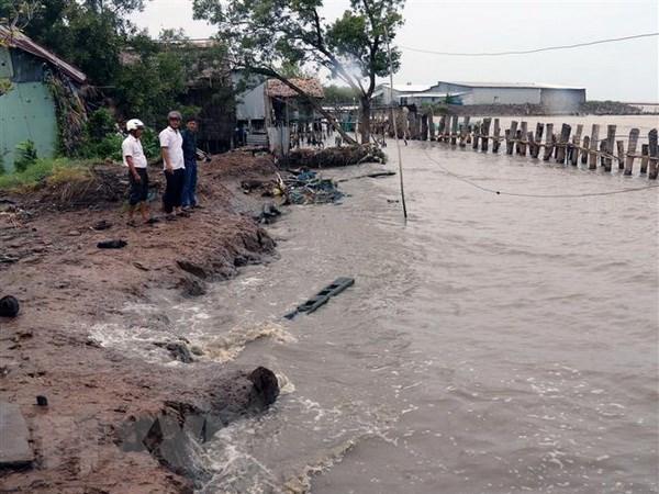 Colloque sur les mesures pour lutter contre l'erosion dans le delta du Mekong hinh anh 1