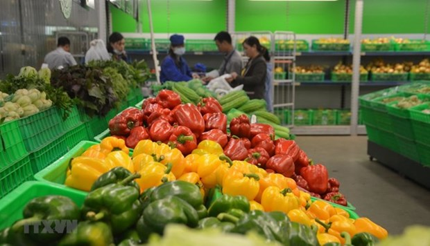 Les exportations de fruits et legumes rebondissent en avril hinh anh 1