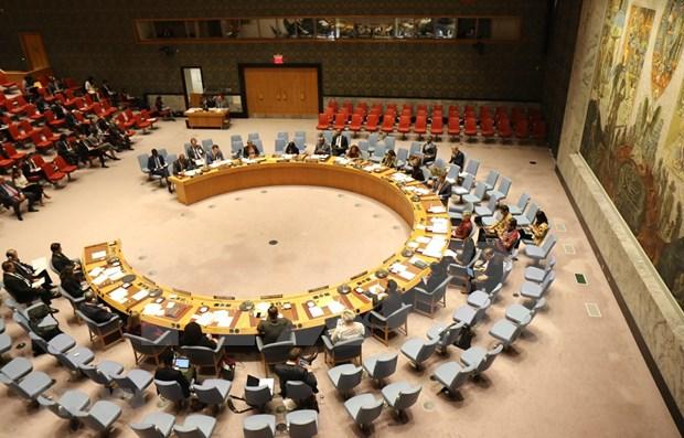 L'ambassadeur du Senegal espere l'attention du Vietnam sur les problemes lies a l'Afrique hinh anh 1