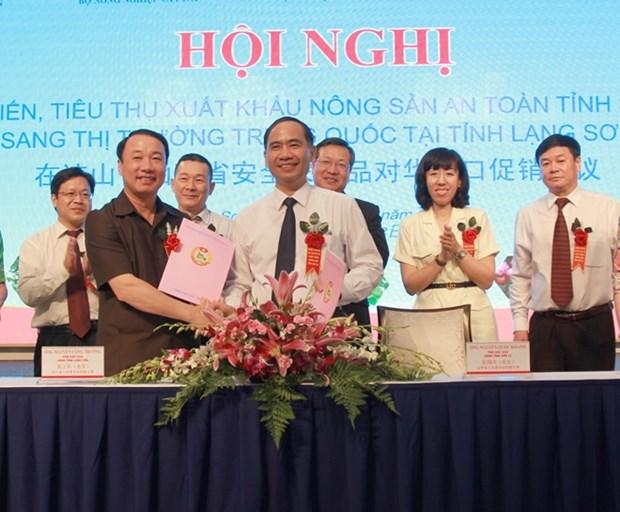 Son La stimule les exportations de produits agricoles vers la Chine hinh anh 1