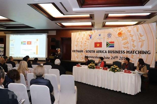 Le Vietnam promeut le commerce en Afrique du Sud hinh anh 1