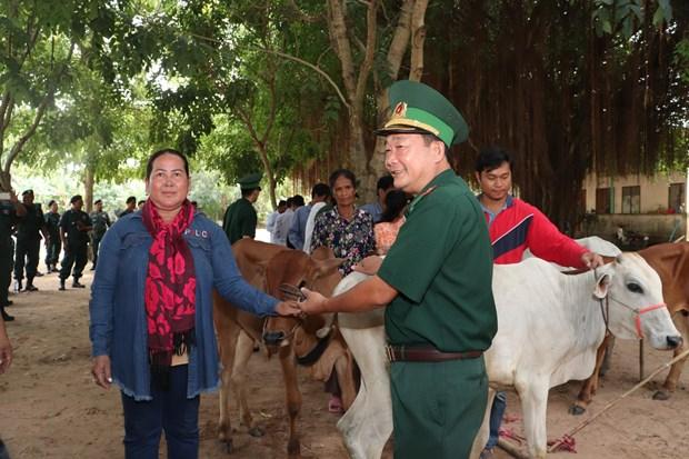 Don de vaches reproductrices a des agriculteurs pauvres vietnamiens et cambodgiens hinh anh 1
