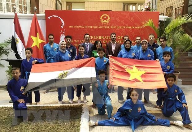 Potentiel de cooperation entre le Vietnam et l'Egypte hinh anh 1