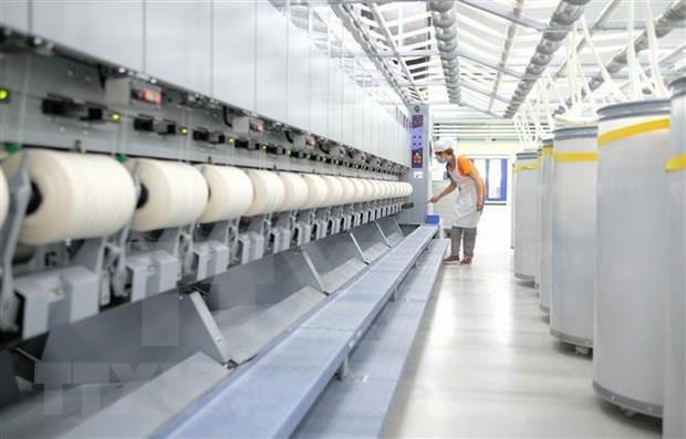 L'usine de fibres molletonnees de Da Lat exporte son premier lot au Japon hinh anh 1