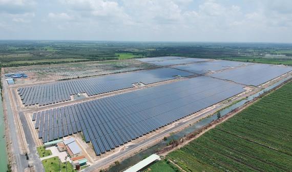 Pour developper les energies renouvelables hinh anh 1