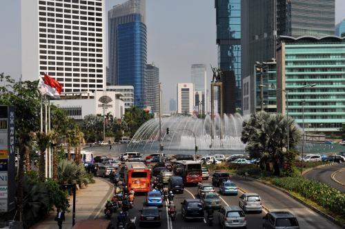 L'Indonesie mise sur le developpement de l'economie bleue hinh anh 1