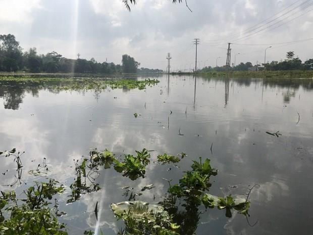 Les inondations font quatre morts et causent de lourdes pertes materielles au Centre hinh anh 1