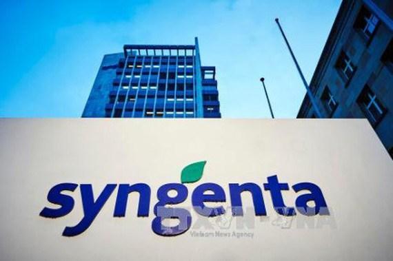 Le groupe Syngenta aide le secteur agricole du Vietnam dans la lutte contre le changement climatique hinh anh 1