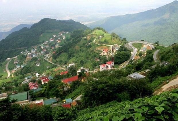Vinh Phuc s'efforce de stimuler l'industrie du tourisme dans le district de Tam Dao hinh anh 1