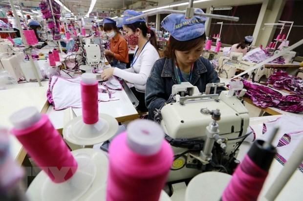 L'economie vietnamienne apres 13 ans d'adhesion a l'OMC hinh anh 2