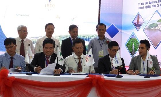 Ca Mau: Connecter le tourisme transnational avec la Thailande et le Cambodge hinh anh 1