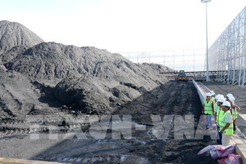 Loi sur la protection de l'environnement: commentaires d'experts pour modifier certains articles hinh anh 1