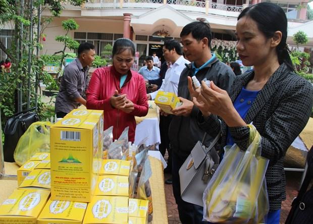 Dak Lak a la foire de promotion du commerce des cooperatives agricoles 2019 hinh anh 1