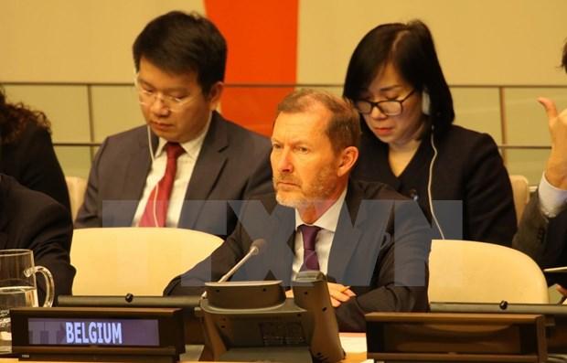 Plusieurs pays apprecient la presidence vietnamienne du Conseil de securite de l'ONU en janvier hinh anh 1
