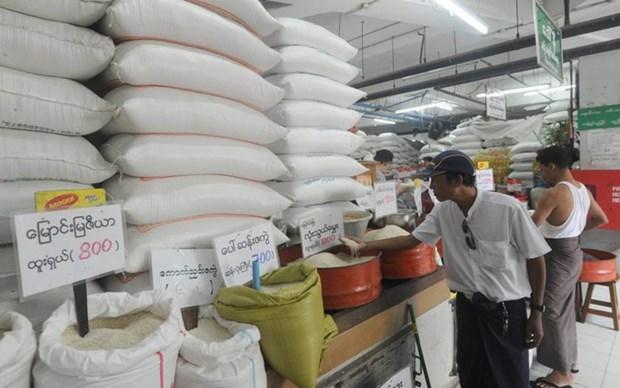Le Myanmar vise a exporter 2,5 millions de tonnes de riz au cours de l'exercice 2019-2020 hinh anh 1