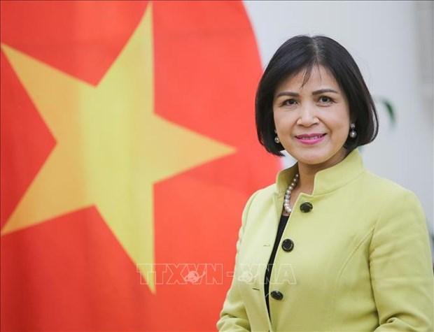 Le Vietnam preside la reunion du Conseil de coordination de l'ASEAN sur les travaux de l'OMC hinh anh 1